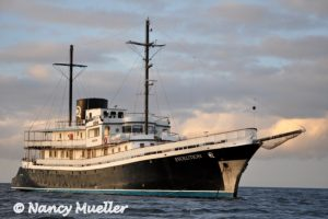 MV Evolution in the Galapagos Islands