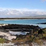 Cruising the Galápagos Islands