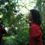 Foraging Fun with Jennifer Hahn