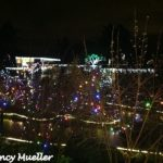 WildLights at The Woodland Park Zoo