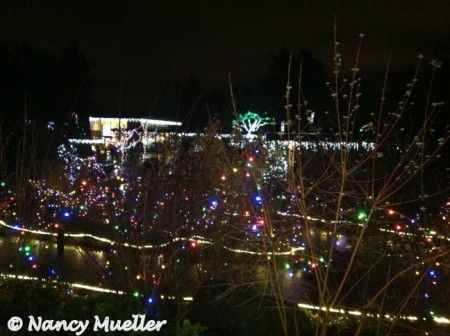 Zoo Lights (450 x 336)