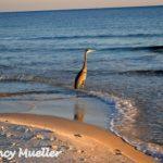 Girlfriend Getaway: Gulf Shores & Orange Beach, Alabama