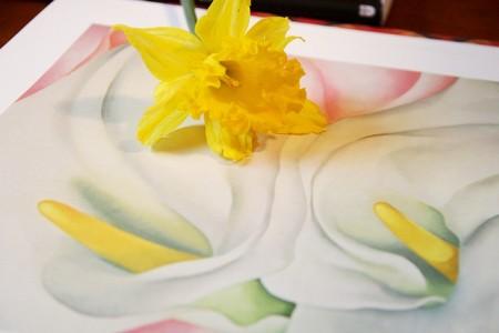 FlowerStudyGeorgiaO'keeffe (450 x 300)