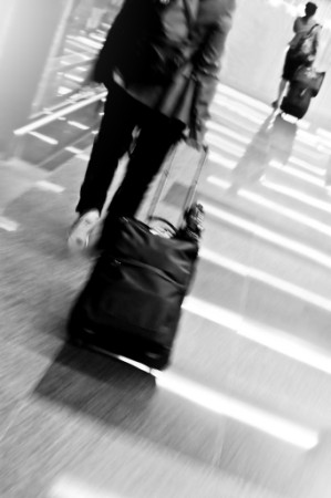 Business Traveler (299 x 450)
