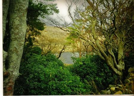 IrishLandscapeobbinoflickr (450 x 321)