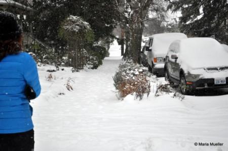 Snowy Seattle Walk