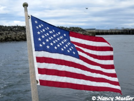 U.S. American Flag Plover Ferry