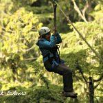 Ziplining 101 with Ziptrek Ecotours
