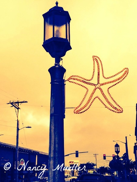 Seaside Starfish Sign