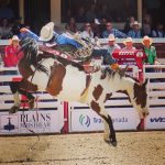 """Cowboy Up"" at Canada's Calgary Stampede!"